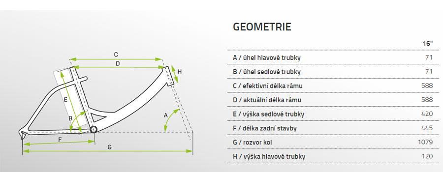 geometrie tocho 2020